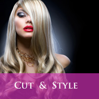 Cut & Style North York